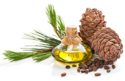 products-cedar-tree-pine-nuts-cones-oil-isolated-white-background-55602777